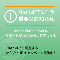 flash_se_mb